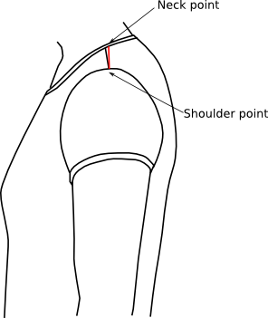 View of the correct shoulder point on the body