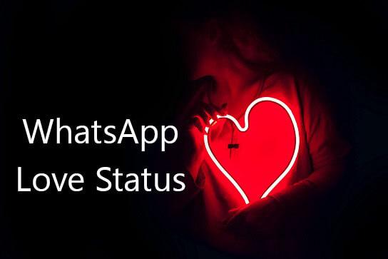 love stats whatsapp