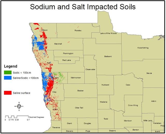 Map of saline, sodic and saline/sodic soils in northwest Minnesota.