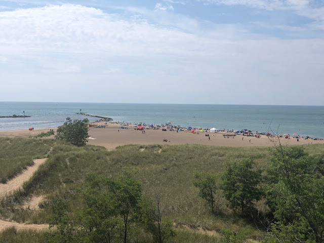 View of New Buffalo Beach from atop of the bluff!