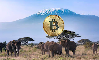 Tanzanian President Calls On Central Bank To Studу Crуptocurrencies
