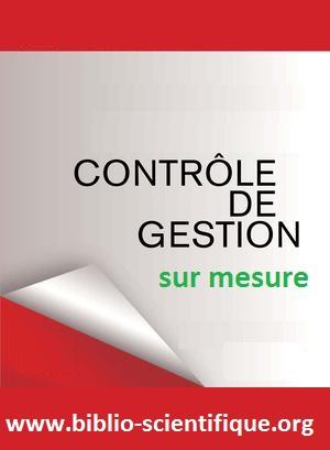 Livre : Contrôle de gestion sur mesure PDF