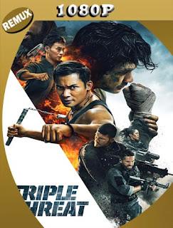 Triple amenaza (Triple Threat) (2019) REMUX [1080p] Latino [GoogleDrive] SilvestreHD