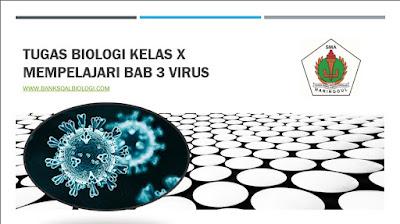 Tugas Biologi Kelas X Mempelajari Bab 3 VIrus