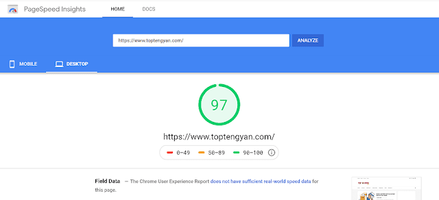 SEO-Google PageSpeed Insights