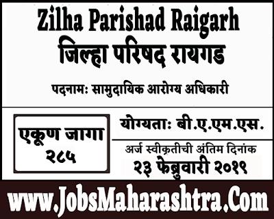 ZP Raigarh Recruitment 2019
