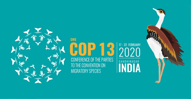 CMS COP-13; INDIATHINKERS