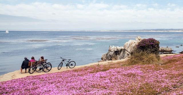 Quantidade de dias para ficar em Monterey