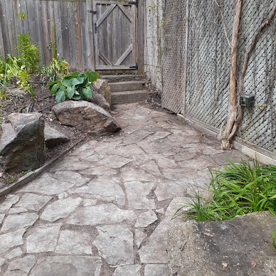 Toronto Back Garden Spring Cleanup After in Riverdale by Paul Jung Gardening Services