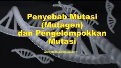 penyebab mutasi dan pengelompokkan mutasi