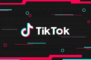 download tik tok videos