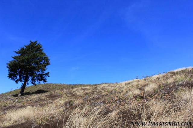 Gunung Prau via Dieng