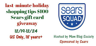 $100 Sears Gift Card Giveaway US only