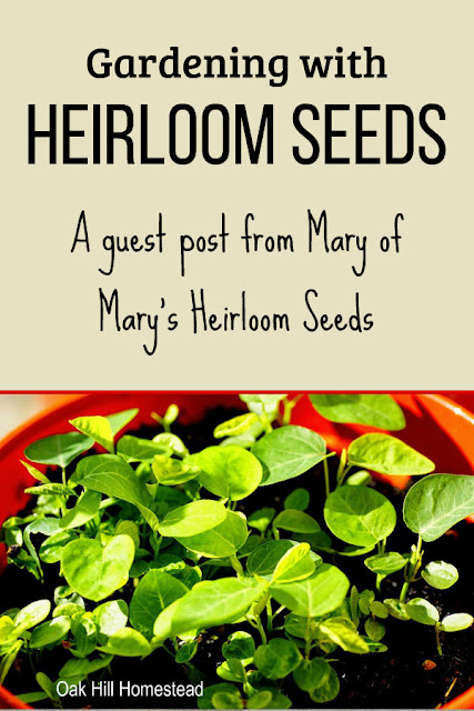 Come visit with Mary of Mary's Heirloom Seeds and learn about heirloom, hybrid and GMO seeds.