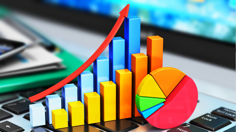 Ngành thống kê là gì?