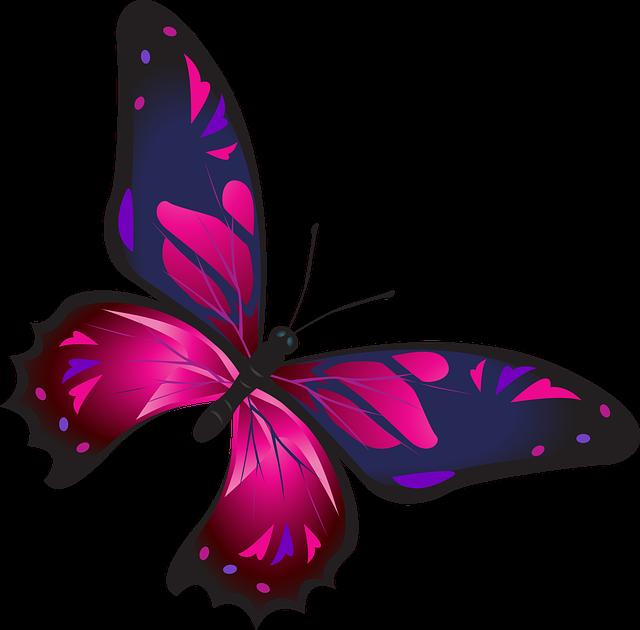 أجمل لون هو اللون الموف لفراشة