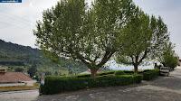https://castvide.blogspot.pt/2018/04/photos-garden-jardim-do-bacalhau.html