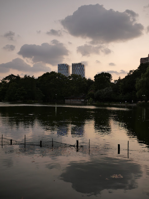 clouds reflecting on lake at dusk at Lu Xun Park in Shanghai