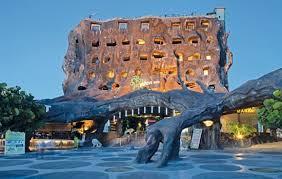 Pohon Inn Hotel Batu, Memberikan Pengalaman Luar Biasa Bagi Para Pegunjung