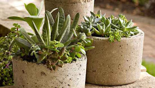 Make Hypertufa Pots For Plants
