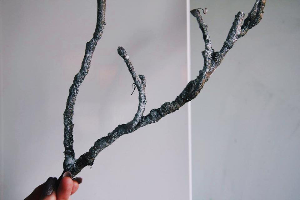 Twig covered in snow spray.