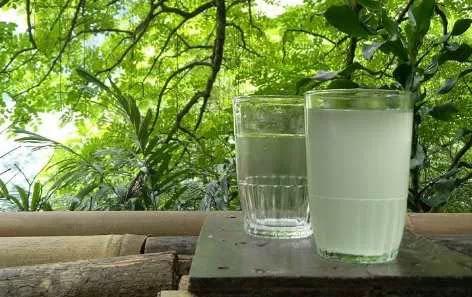 Minuman Segar Khas Indonesia