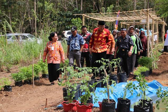 Ditandai Dengan Pemukulan Gendang Bupati Bulukumba Canangkan Sembilan Desa Organik