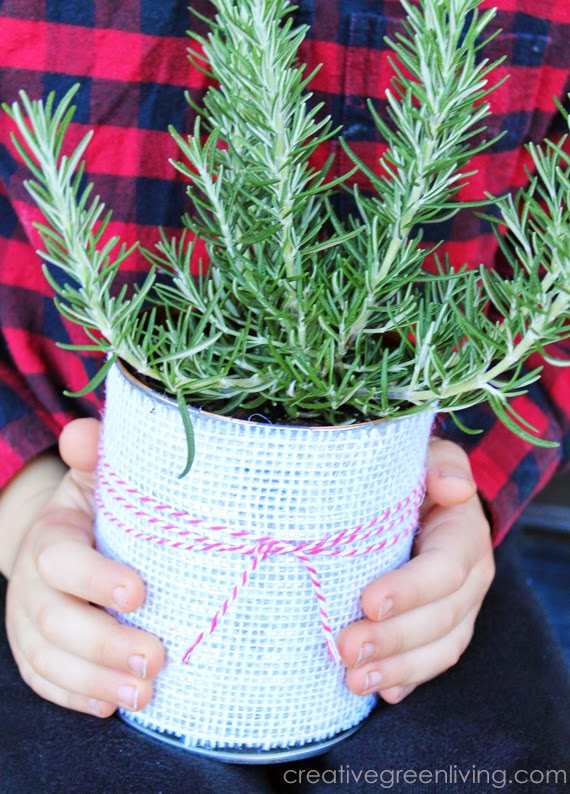 Burlap Tin Can Planter from Creative Green Living