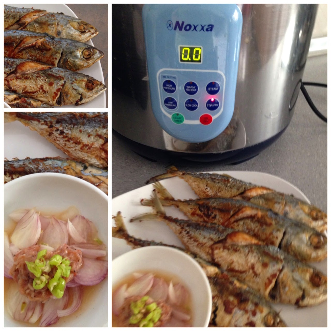 Janet wooi 39 s blog november 2014 for Pressure cooker fish