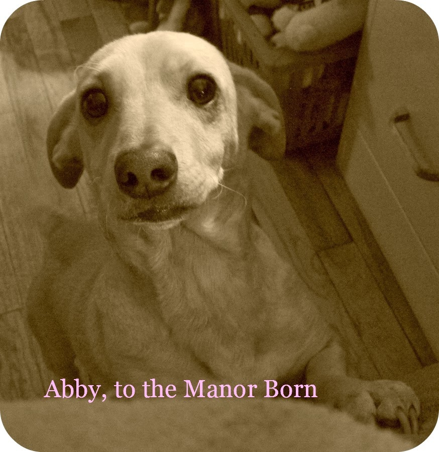 View from the Birdhouse: Watching Downton Abbey with