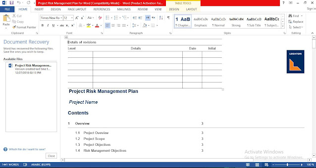 Project Risk Management Plan for Word