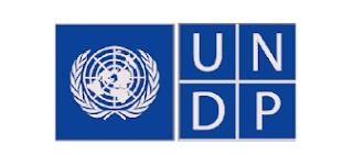 Job_Advert:_ICT_Assistant-ONU_Femmes