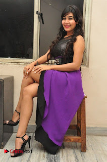 Telugu Actress Rachana Smith Stills at Money is Honey Audio Release  0073.jpg