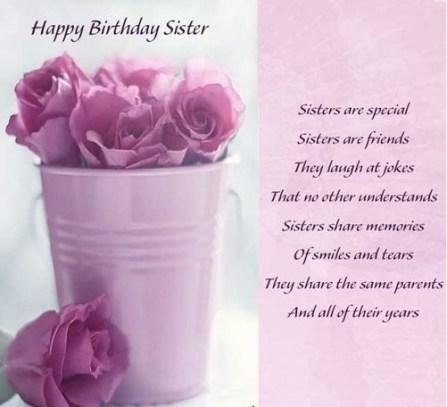 The rosy cheeks diva happy birthday sister happy birthday sister m4hsunfo