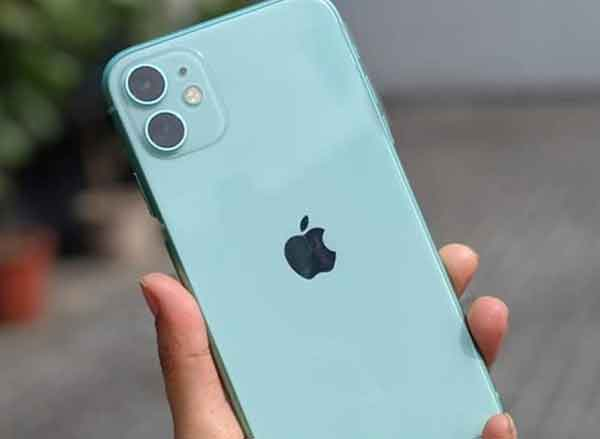 News, National, India, Mumbai, Technology, Amazon, iPhone, Mobile Phone, Business, Finance, Offer, Deal Alert: iPhone 11 can be yours for less than Rs 50,000 during Amazon sale