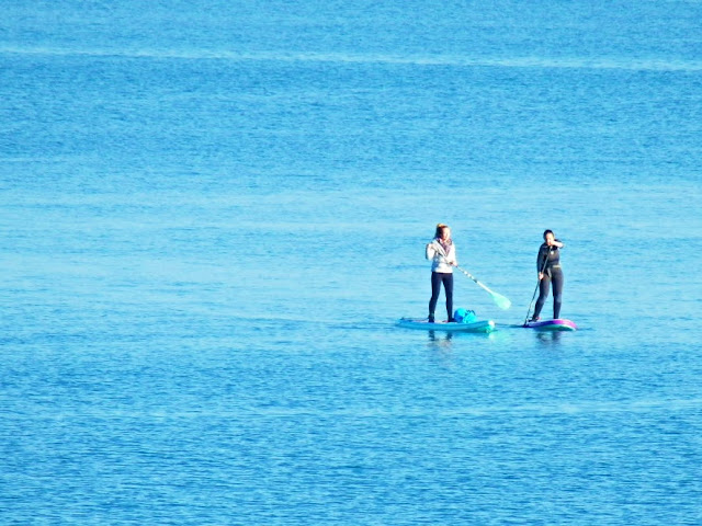 Mavagissey, Cornwall: two girls on paddle boards