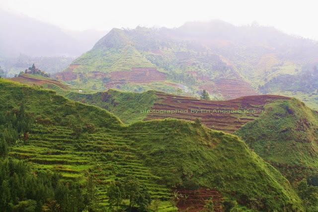 Pegunungan sekitar Guci