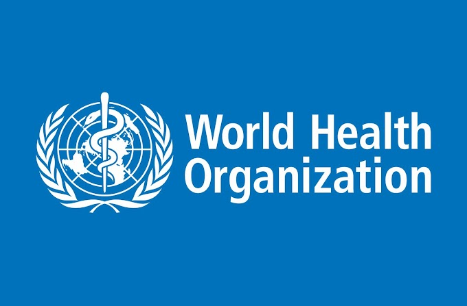 WHO Indonesia Vacancy : Programme Operations Officer