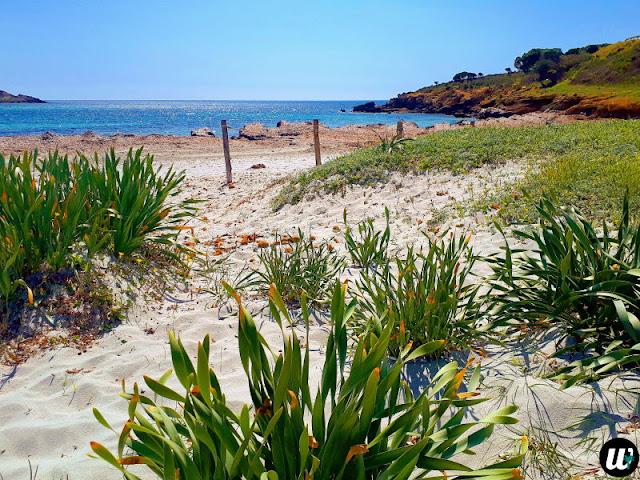 di Piscinni beach, Teulada | Sardinia, Italy | wayamaya