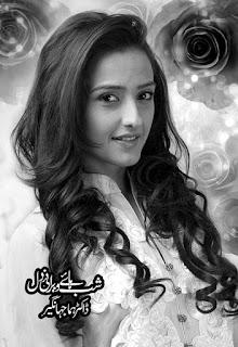 Shab Haye Werani Dil By Dr. Huma Jahangeer