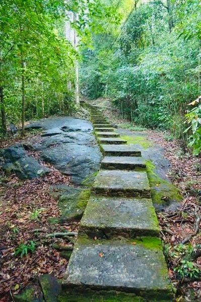 තුරුලතා වලින් වටවුණු - බෝධිනාගල ආරණ්යය 🙏 (Bodhinagala Forest Hermitage) - Your Choice Way