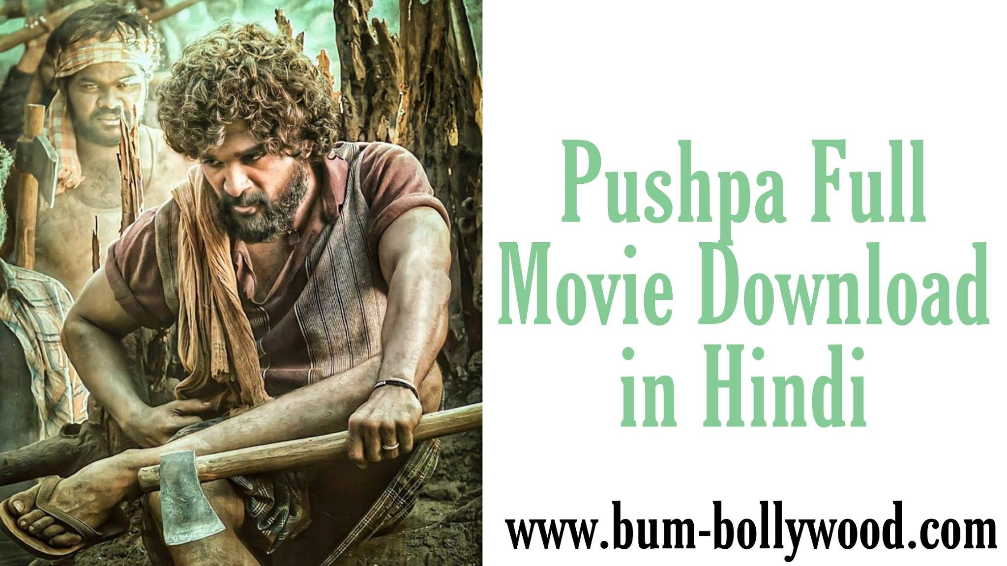 Pushpa Full Movie Download in Hindi 480p filmyzilla