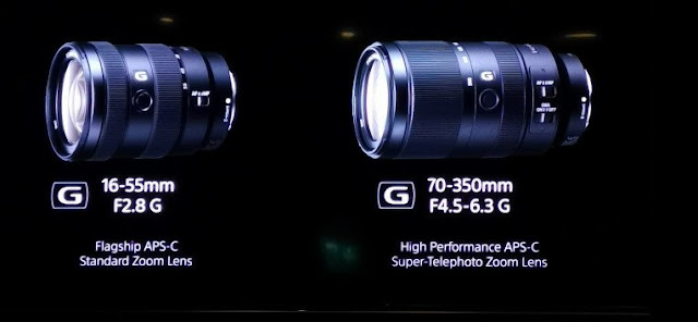 Sony: the a6100 and the top a6600