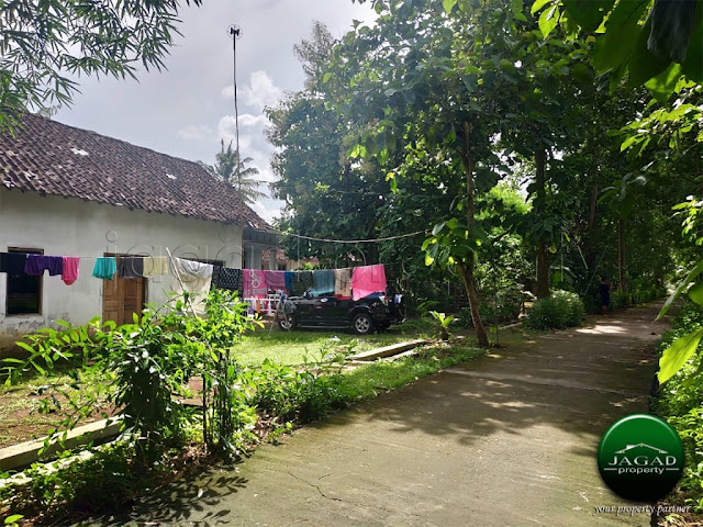 Tanah di Sentolo dekat Bandara Kulon Progo