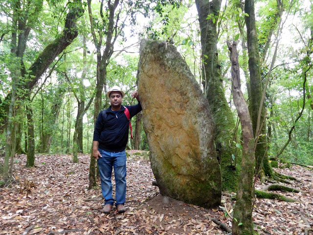 One of the biggest upright stones inside the Mawphlang Sacred Forest, Meghalaya