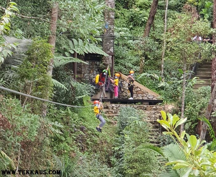 Penang Zipline Activity In The Habitat Penang Hill