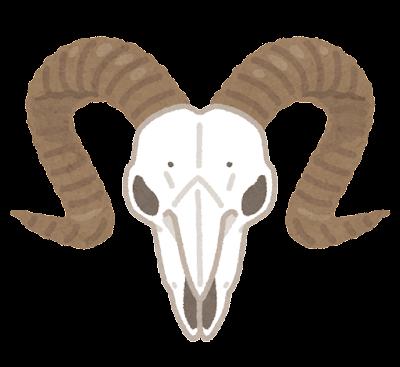 羊の頭蓋骨のイラスト