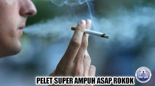 Pelet Asap Rokok
