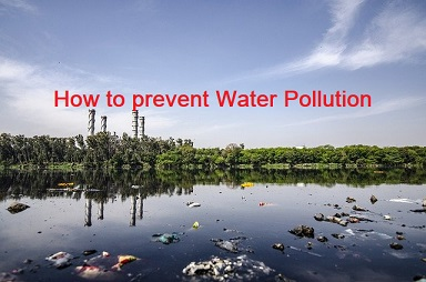 How to prevent water pollution Essay, How can we prevent water pollution, essay on how to prevent water pollution, how to reduce water pollution