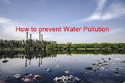 How to prevent water pollution Essay, How can we prevent water pollution